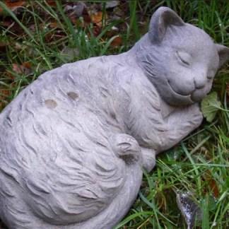 Katze Flori - Katze Flori liegend