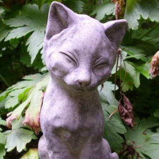 Katze Kalinka