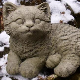 Katze Locky