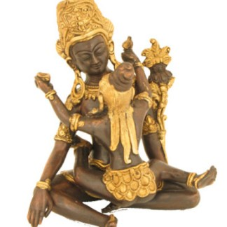 Tantra Buddha-Shakti 20cm
