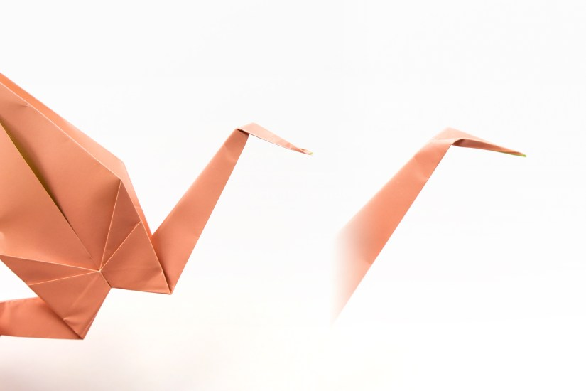 34. Choose one end to be the crane's head. Fold it over in the angle you prefer and then inside reverse fold it.