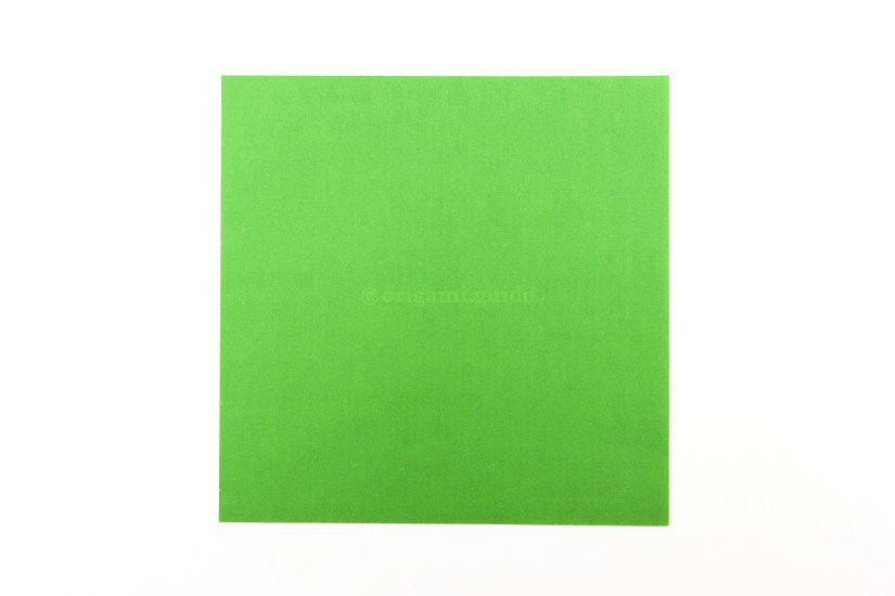 1. This is the back of the paper (usually white). We will start off by making an origami cupboard fold.