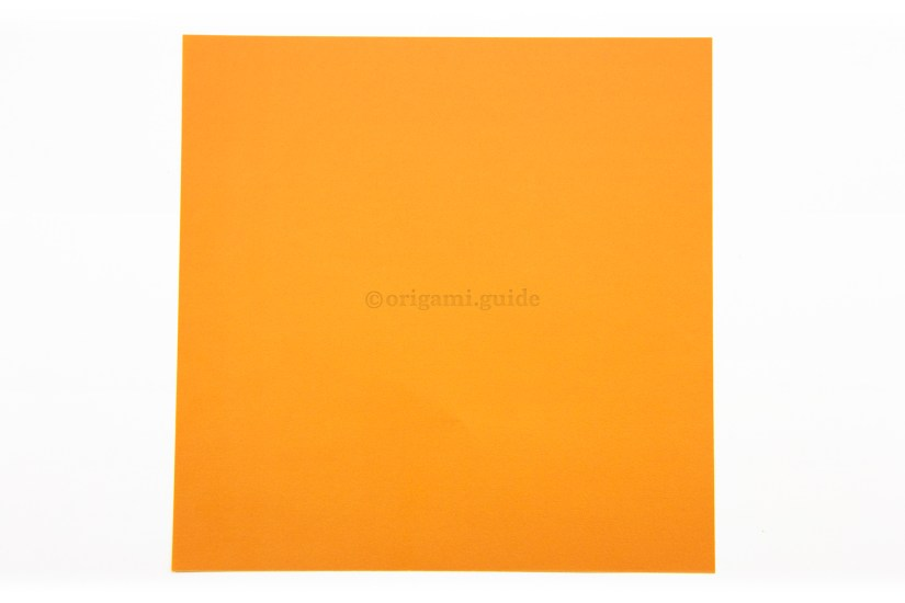1. This is the back of the paper, usually white. Our star will only show this color on the layered back.
