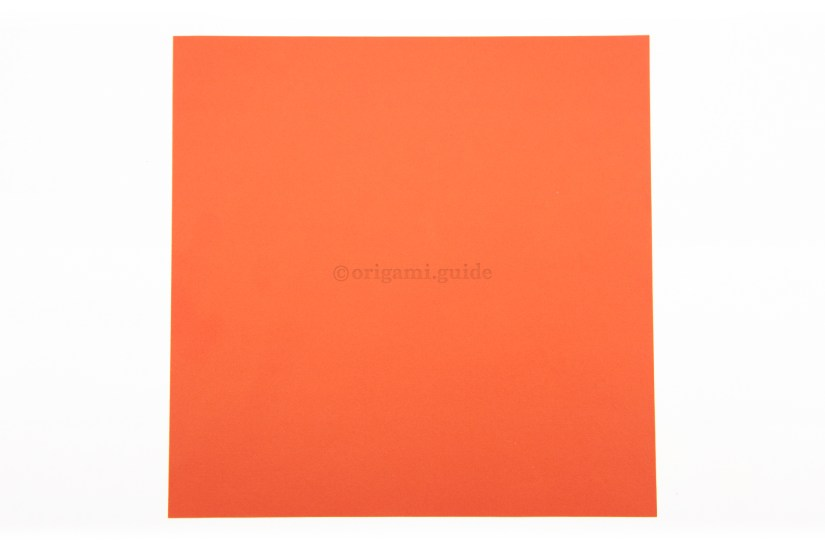 1. This is the back of the origami paper, usually white. This colour will be visible on the bottom of the lotus if you fold the last set of petals.