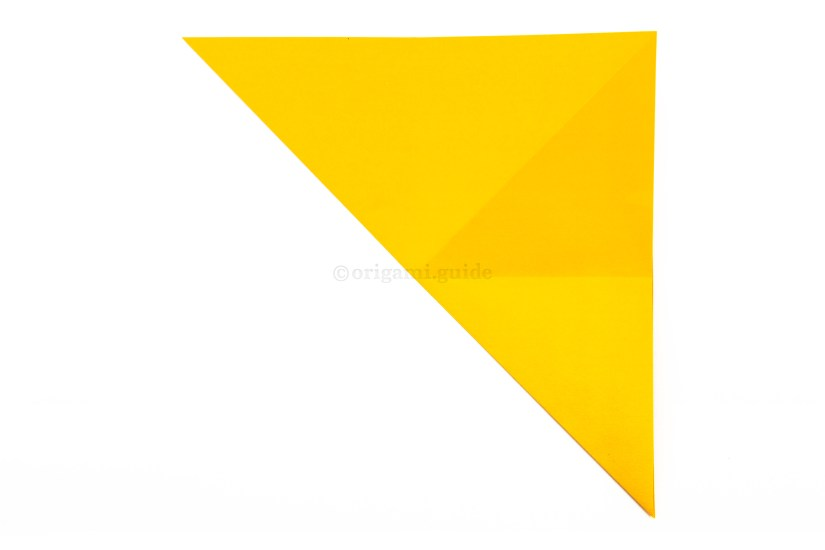 10. Fold the bottom left corner diagonally up to the top right corner.
