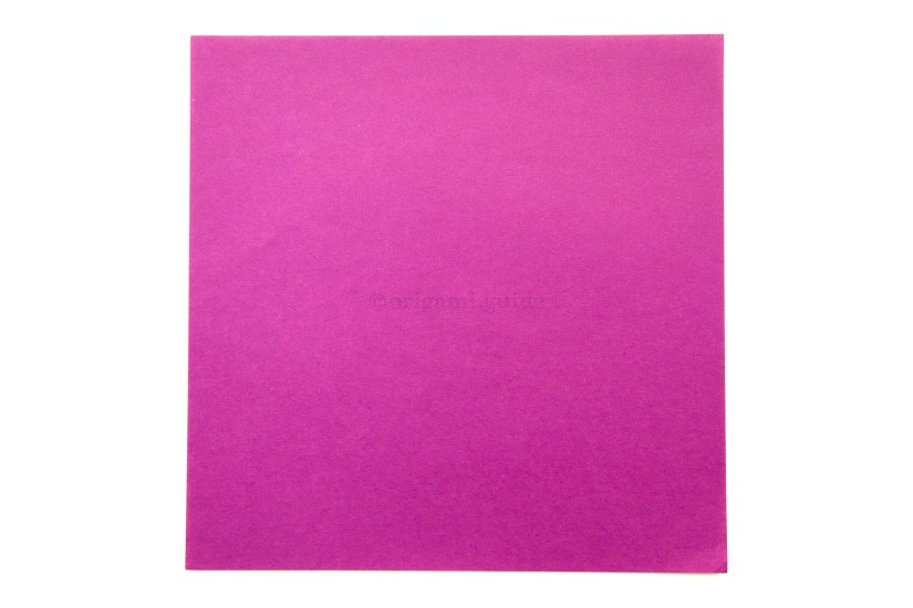 1. This is the front of the paper, our blintz base will be this colour.
