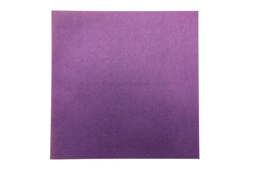2. This is the back of the paper, this colour will not be visible on the final model.
