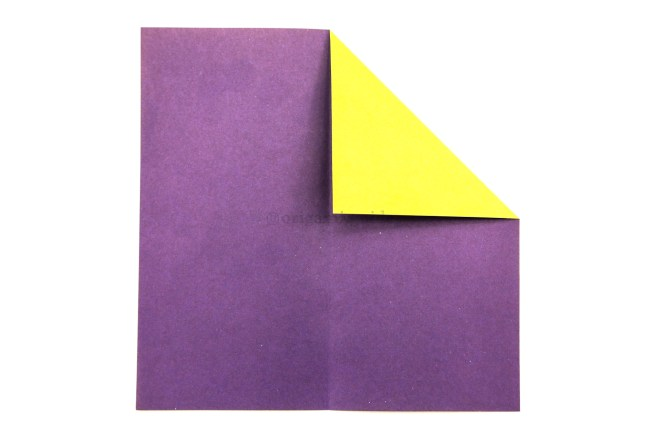 5. Fold the top right corner diagonally down to align with the crease you made in the previous step.