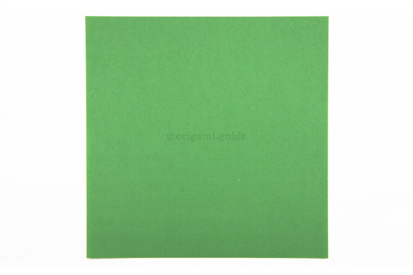 2. This is the back of the paper, this colour will not be visible on our final frog.