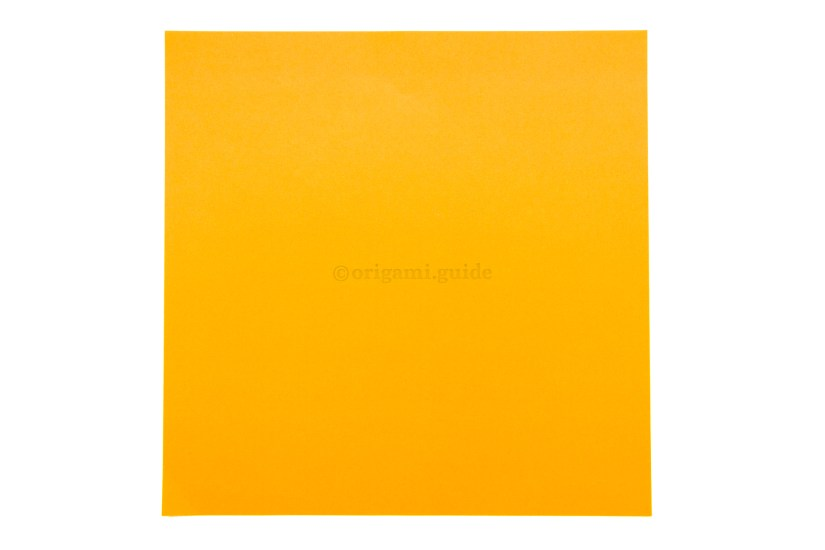 2. This is the back of the paper, usually white. The inside of the box will be this color.