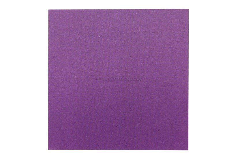 1. This is the front of the paper, our origami butterfly will end up being this colour.