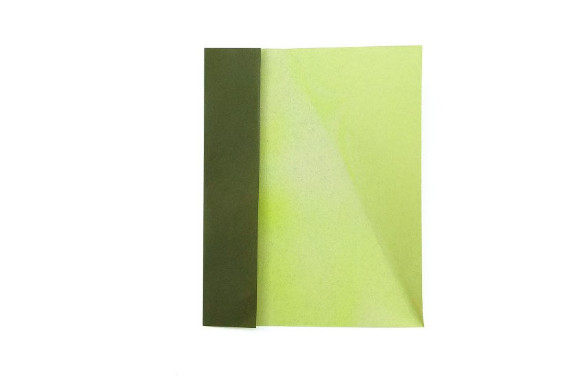 6. Unfold the triangular flap and completely fold the left edge over along the small crease you just made.