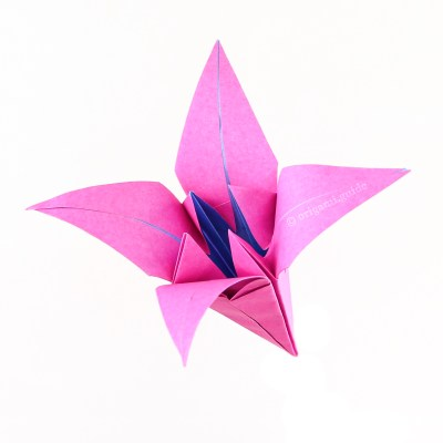 Origami Lily Bud Flower Variation