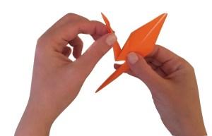 Hands folding a crane