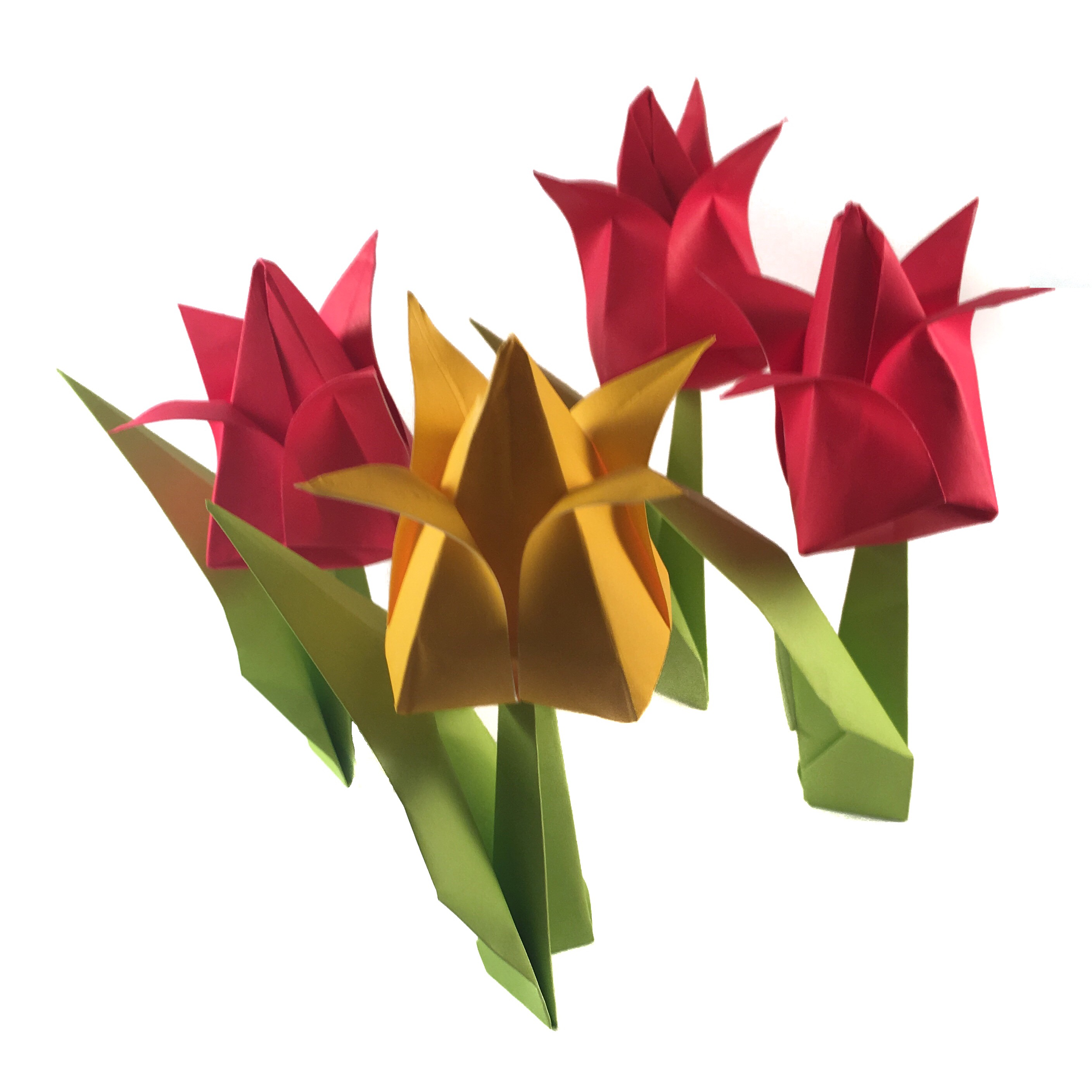 traditional origami tulip video origami expressions