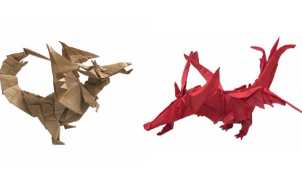 Choose your Dragon!