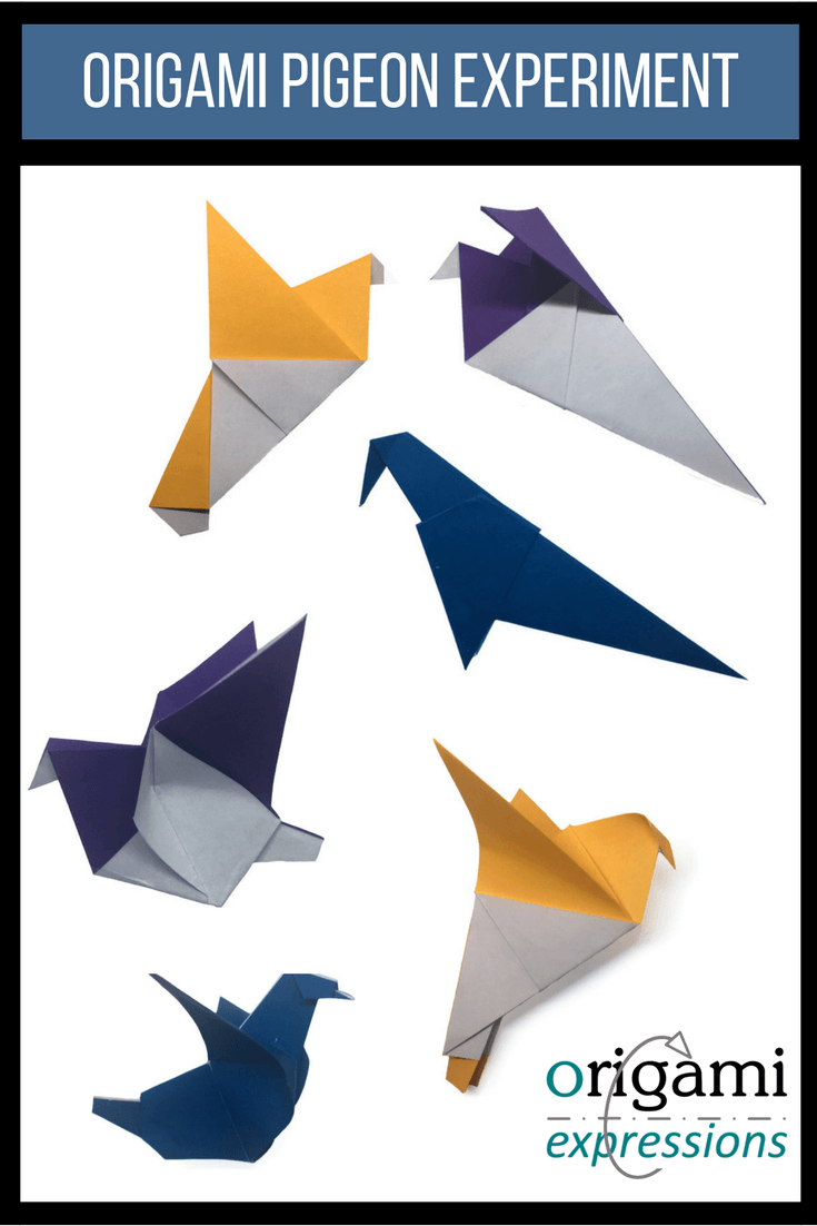 Want to fold an origami pigeon? There are several different traditional origami pigeon models and with some modifications, you might enjoy them. | Origami Pigeon Tutorial | Origami Pigeon Instructions | Paper Pigeon DIY | Origami Dove Easy | Origami Dove Instructions | Pigeon Origami | Traditional Origami Tutorials | Origami Bird Easy | Origami bird instructions | Origami bird tutorial