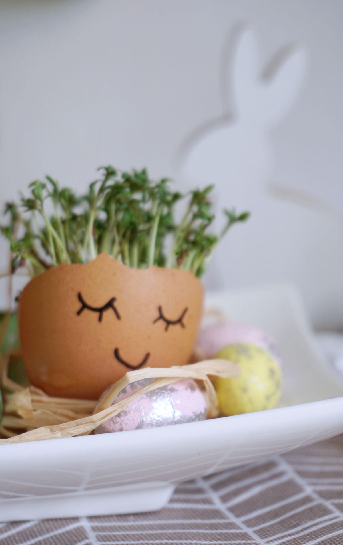 Zrób to sam dekoracja ze skorupek jaj na stół wielkanocny z rzeżuchą