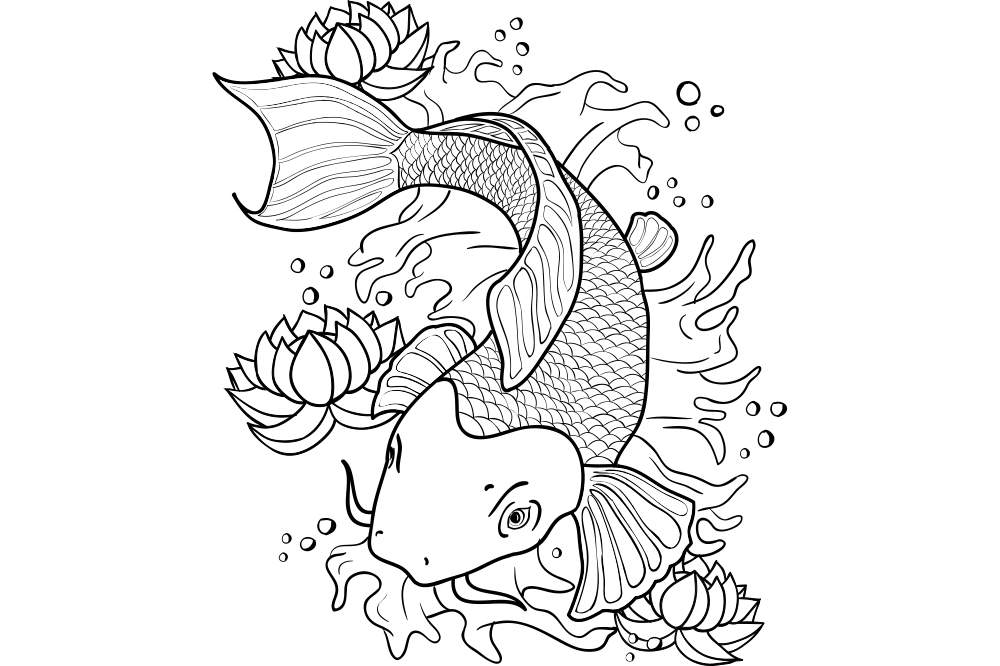 『大人の塗り絵 - 鯉(コイ)』