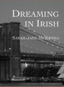 dreaming in irish cover