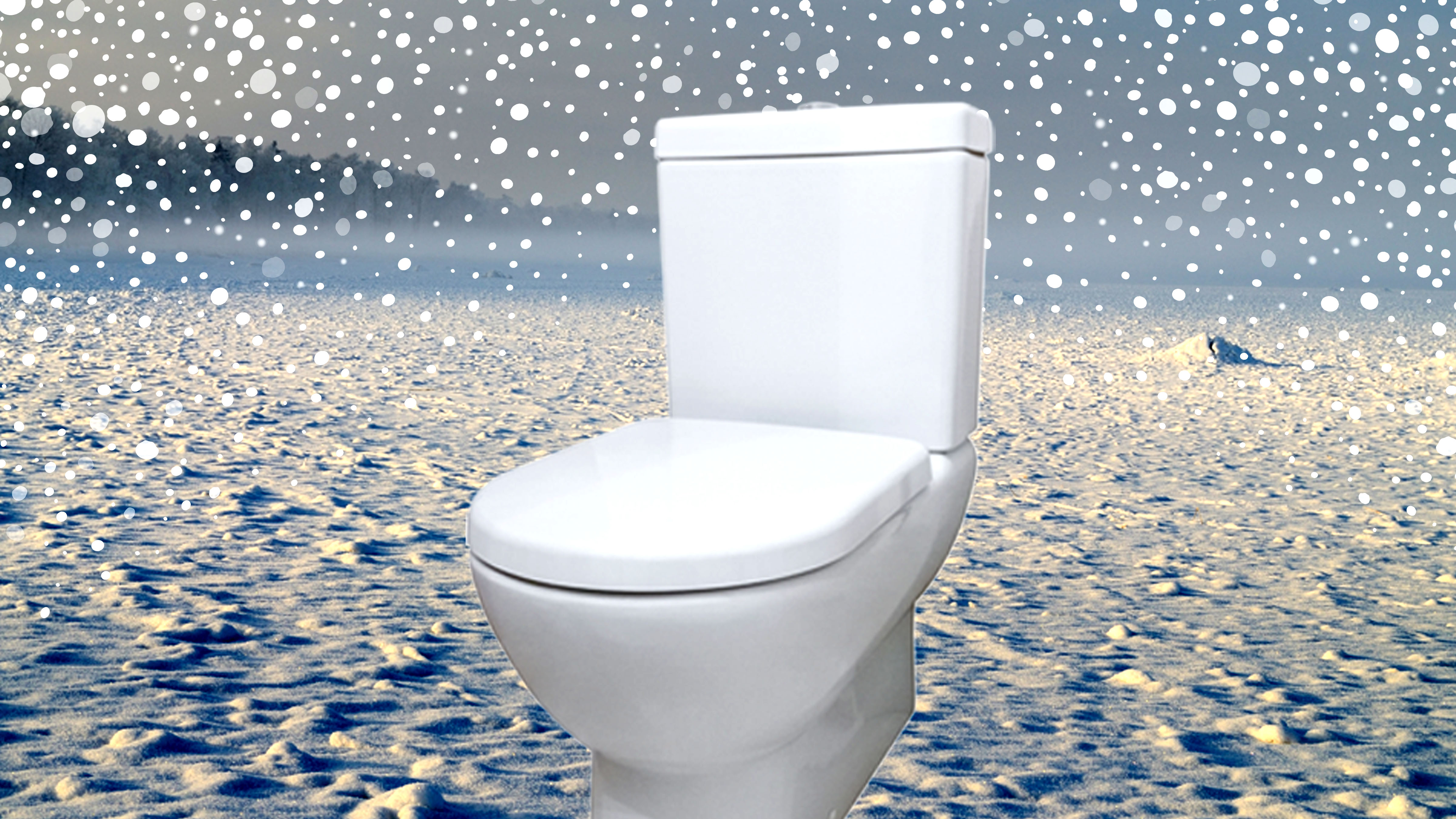 How To Warm Up A Freezing Cold Toilet Seat Dollar Shave Club