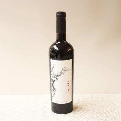 vino-innato-tinto