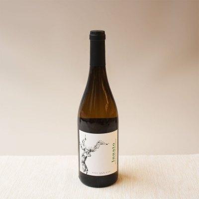 Vino-innato-blanco
