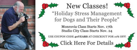 odw-slider-holiday-class