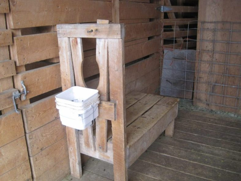 Wooden Milking Stanchion