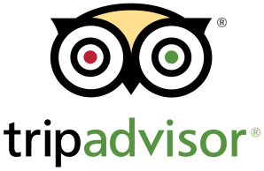 Original Viking Walk - Tripadvisor Logo