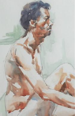 David Hayes (IRE) detail