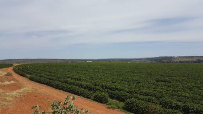 Ecoagricola Serra Do Cabral - Brazil