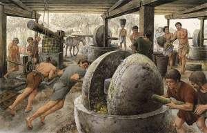 Importancia del aceite de oliva imperio romano