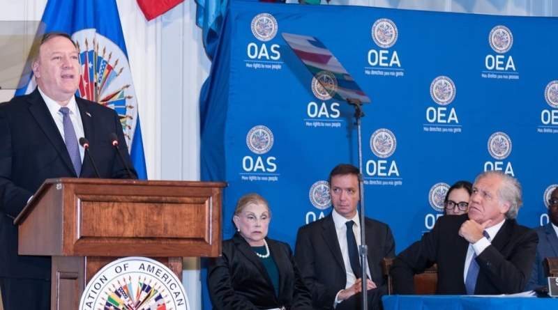 The Grayzone and CODEPINK Ask Why OAS Doesn't Monitor Badly Flawed US Democratic Primary