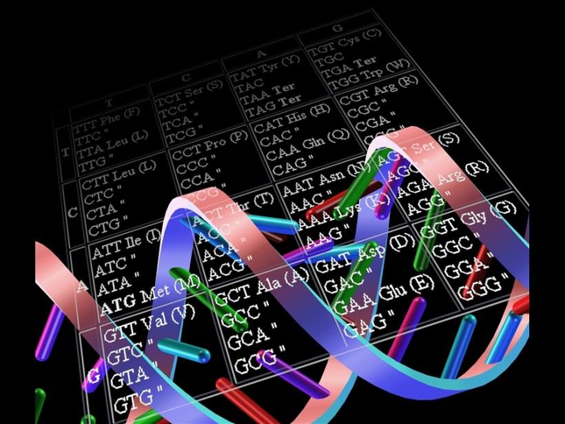DNA grande libro della Vita
