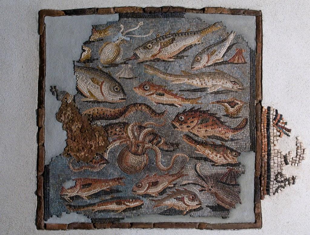 Tessellato con pesci MAN, Aquileia 2200 mostra Museo Ara Pacis