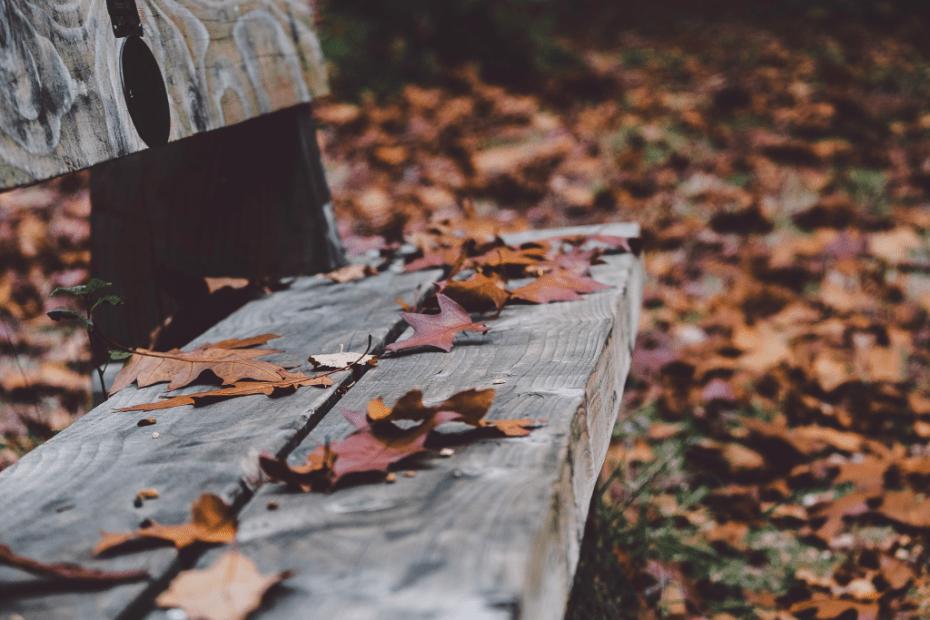Fuga d'autunno 5 mete da visitare in Italia