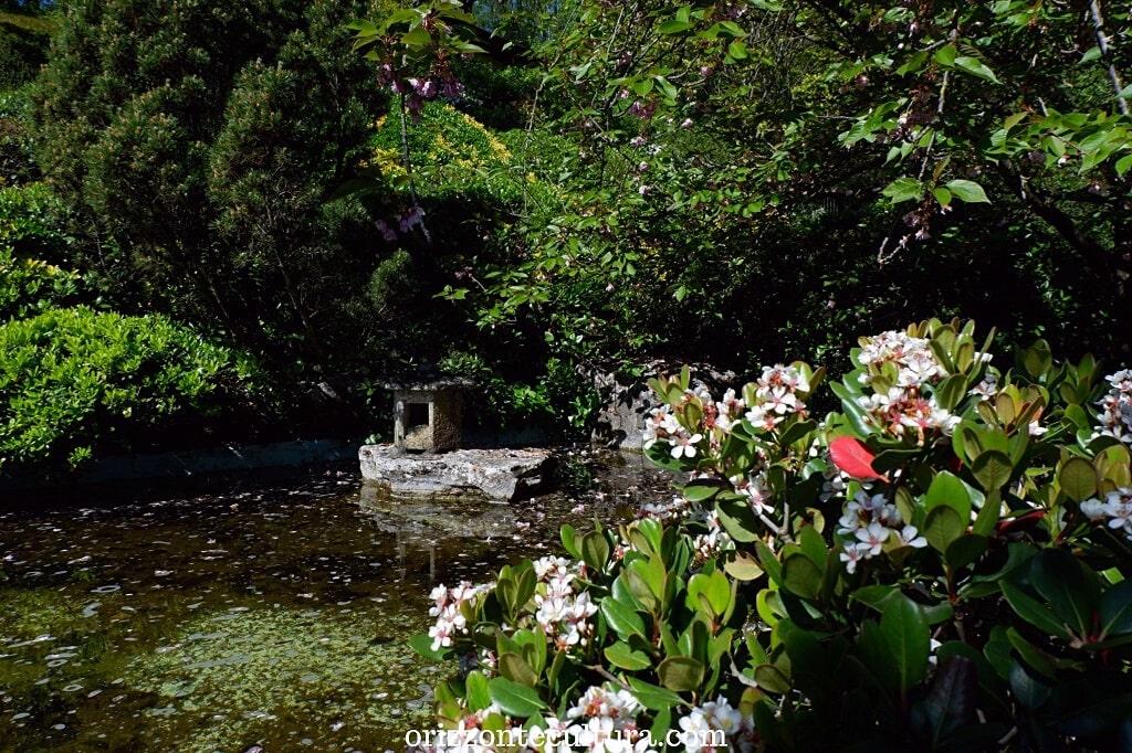 Uno scorcio del Giardino Giapponese, come visitare l'Orto Botanico di Roma
