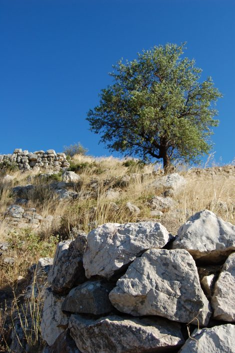 A Micene sono rimaste poche pietre