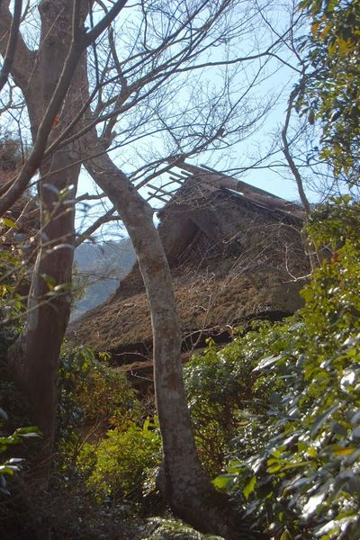 Okochi Sanso, Arashiyama
