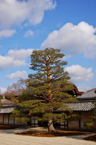 Il tempio Tenryuji, ad Arashiyama