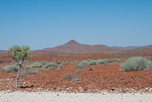 Terra rossa e arbusti, tipico paesaggio del Damaraland