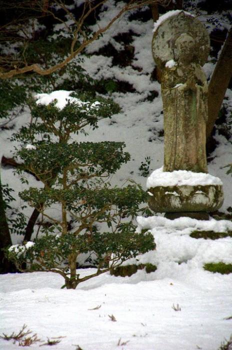 Viaggio invernale in Giappone: giardino del tempio Sanzen-in, Kyoto