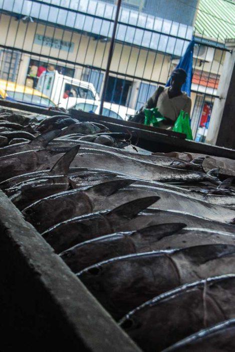 Victoria, mercato del pesce