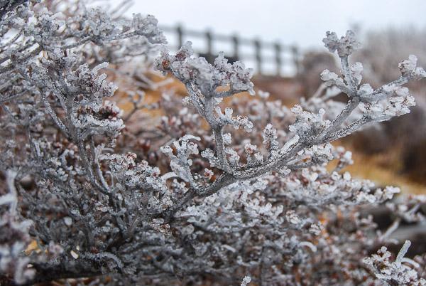Il gelo sul monte Unzen