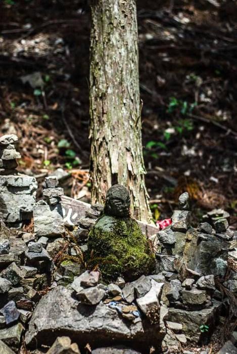 Un vecchio Jizo (credo) in mezzo alla foresta