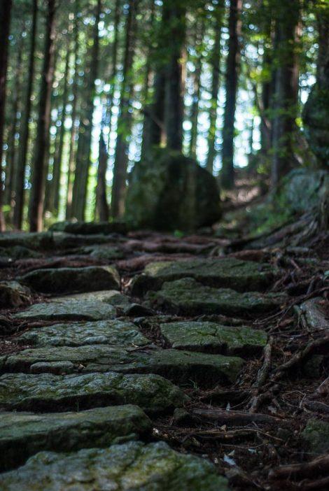 Un tratto lastricato del sentiero