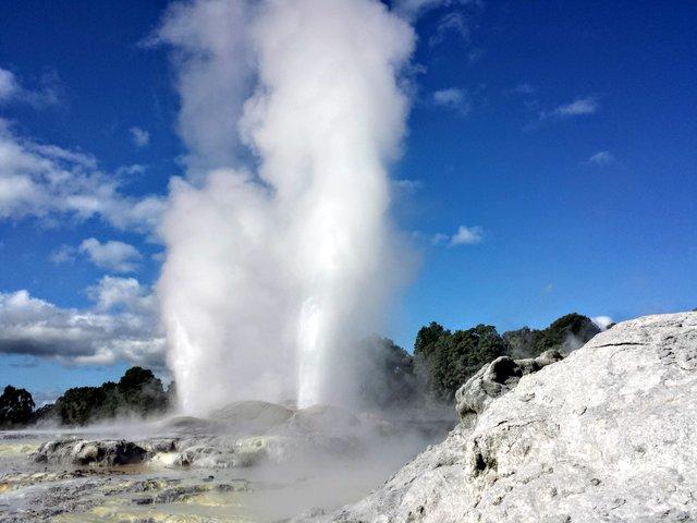 Geyser a Rotorua