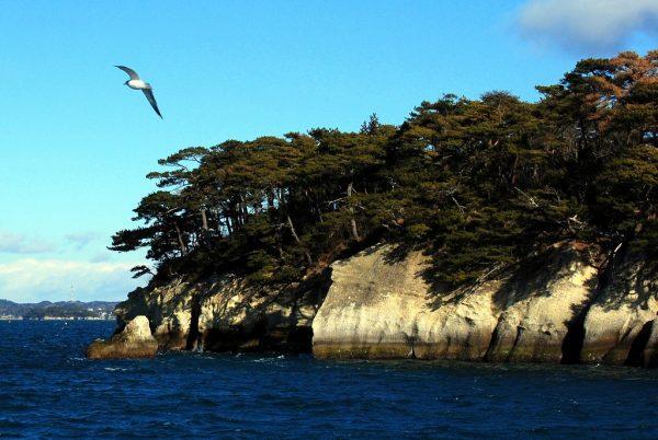 Le isole della baia di Matsushima