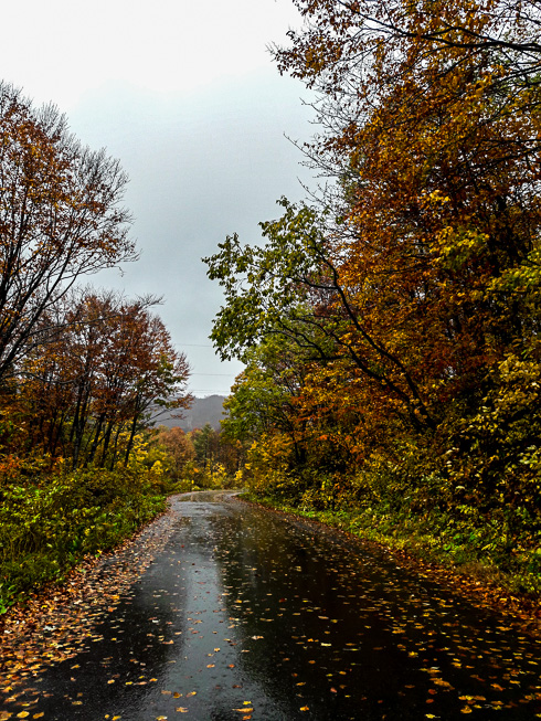 La strada che porta al monte Yudono